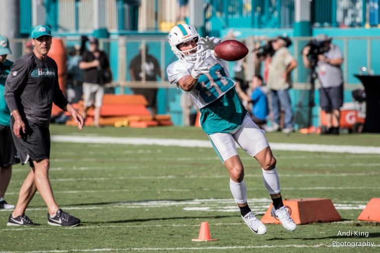 Miami Dolphins Training camp 2018 @AndiKingPhotography